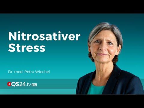 Nitrosativer-Stress - was ist das?