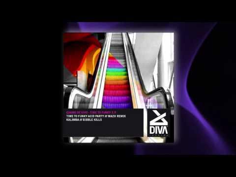 Gianni De Vivo - Time To Funky Acid Party (Original Mix) [Diva Records (Italy)]