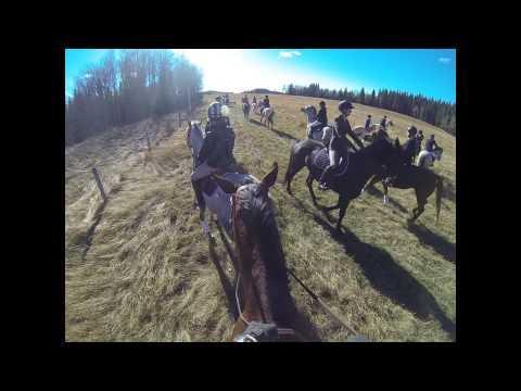 Calgary Hunt Club-Evamy Hagerman Hunt October 12, 2014