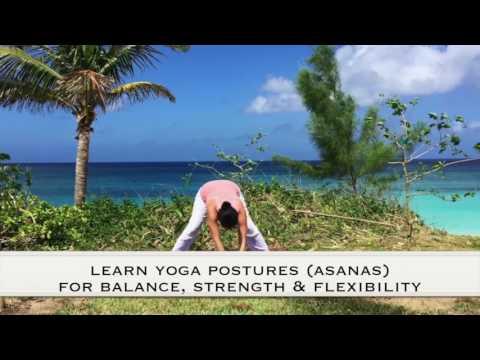 SunLight Hatha Yoga DVD out 7/28/17 www.sunlightyoga.com