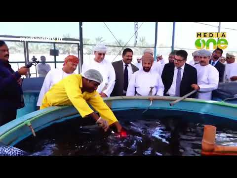 Al Arfan Aquaponics launches Oman's largest Aquaponic project