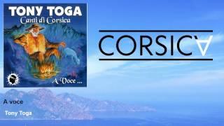 Tony Toga - A voce