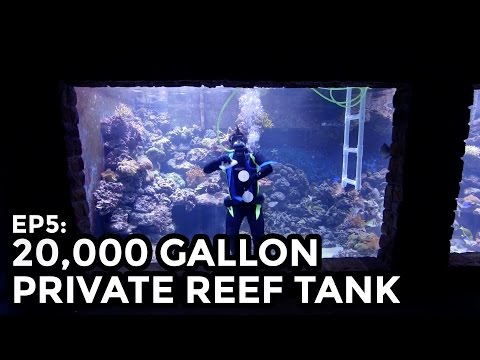 Home 20,000 Gallon Reef Tank, 75,000L - COOLEST THING I'VE EVER MADE: EP5