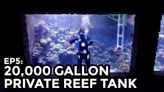 Private 20,000 Gallon Reef Tank 75,000L - COOLEST THING I'VE EVER MADE: EP5