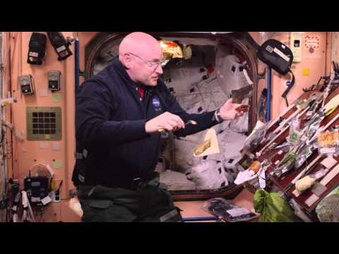 How do you make a chicken taco in space?