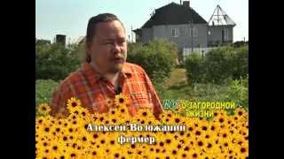Фермер Алексей Воложанин о какой-то фигне говорил