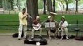 Tin Pan Blues Band in Central Park