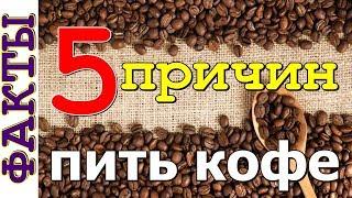 5 причин пить кофе   полезные свойства кофе