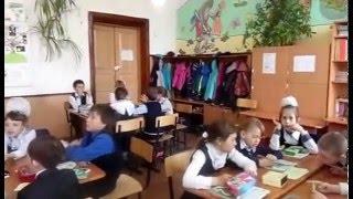 Урок по окружающему миру во 2 классе