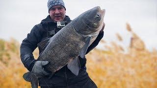 ХИТРАЯ СНАСТЬ на щуку ловит ТОЛСТОЛОБА! Рыбалка 2019.