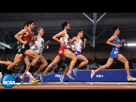 Men's 3000m 2019 NCAA Indoor Track and Field Championship