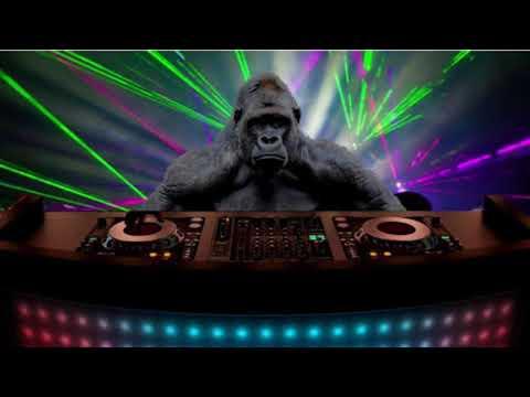 Promise- DJ Gorilla [Audio] 2017