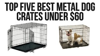 Top Five Best Metal Dog Crates Under $60