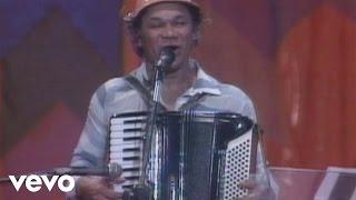 Luiz Gonzaga - Sete Meninas ft. Dominguinhos