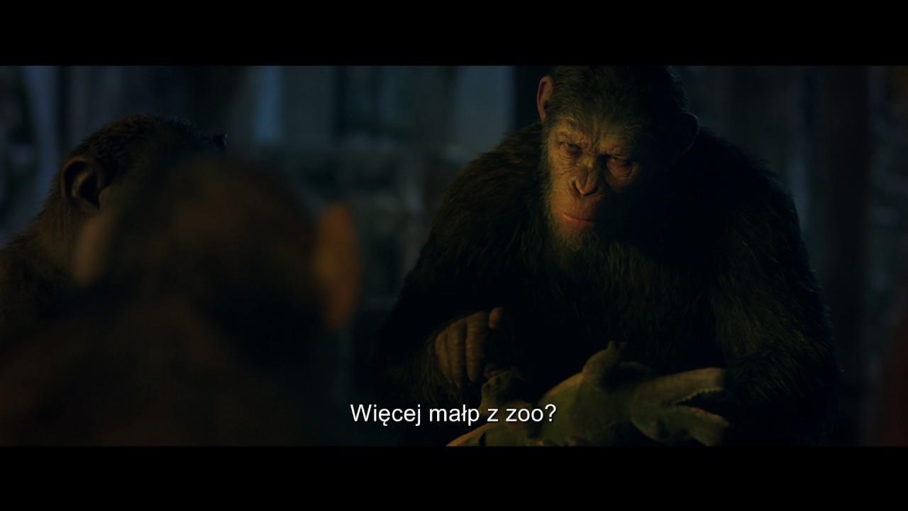 Wojna o planetę małp | Fragment – Zła Małpa [#2] | 2017
