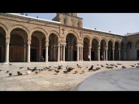 Pigeons Of Al-Zaytouna Mosque Today ! 06/05/2017😍