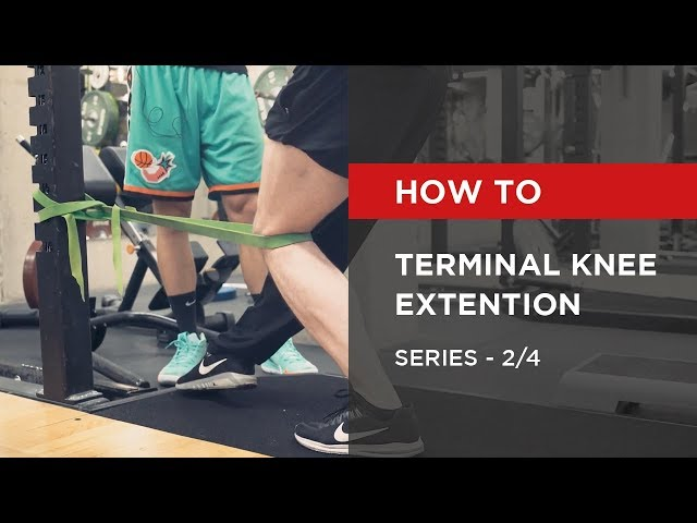 SERIES: Terminal Knee Extention [2/4]