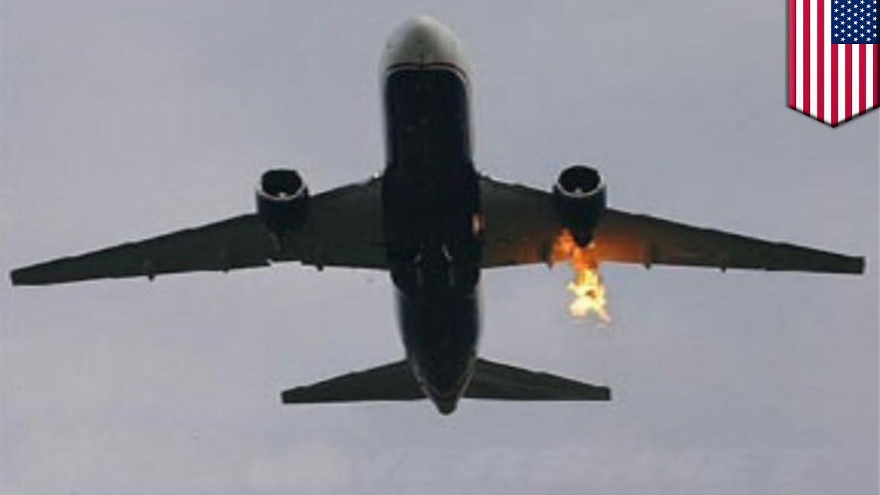 Bird strike forces Alaska Airlines Flight 336 to make emergency landing in  Seattle