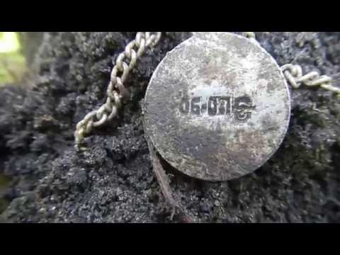 Поиск золота в диком лесу  Minelab X Terra 705 & Garrett Ace 250