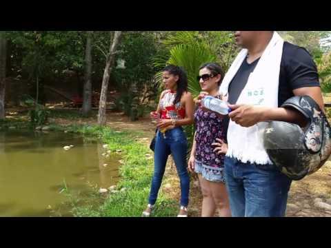Parque leche miel Paz de Ariporo, Casanare