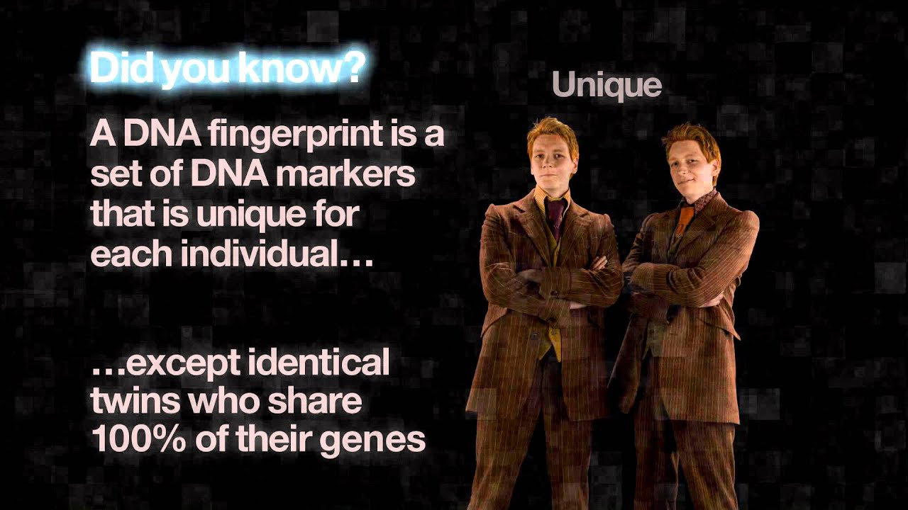 Dna the blueprint of life youtube dna the blueprint of life malvernweather Choice Image