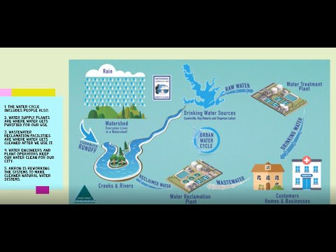 Urban Water Cycle - Blue Heron Hangout