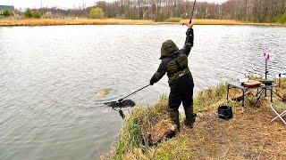 Бешеный клёв сазана и карпа Первые весенние трофеи на ФЛЭТ ФИДЕР Рыбалка 2020