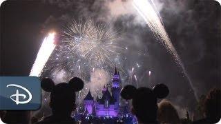 Behind the scene as Disney Park 4