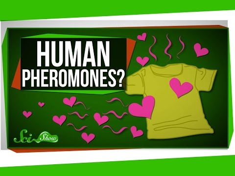 Do Humans Have Pheromones?