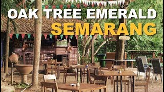 Gambar cover Staycation di Semarang Berasa di Ubud, Bali (Oak Tree Emerald Semarang) #APPVLOG25