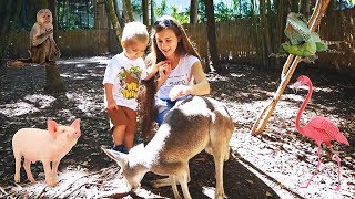 MIKE EXPLORES ANIMALS FOR KIDS| FUNNY ANIMALS|KIDS LEARN ANIMALS