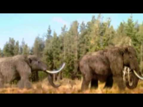 Dinosaur Revolution - Discovery Channel  - Discovery Dinosaurs