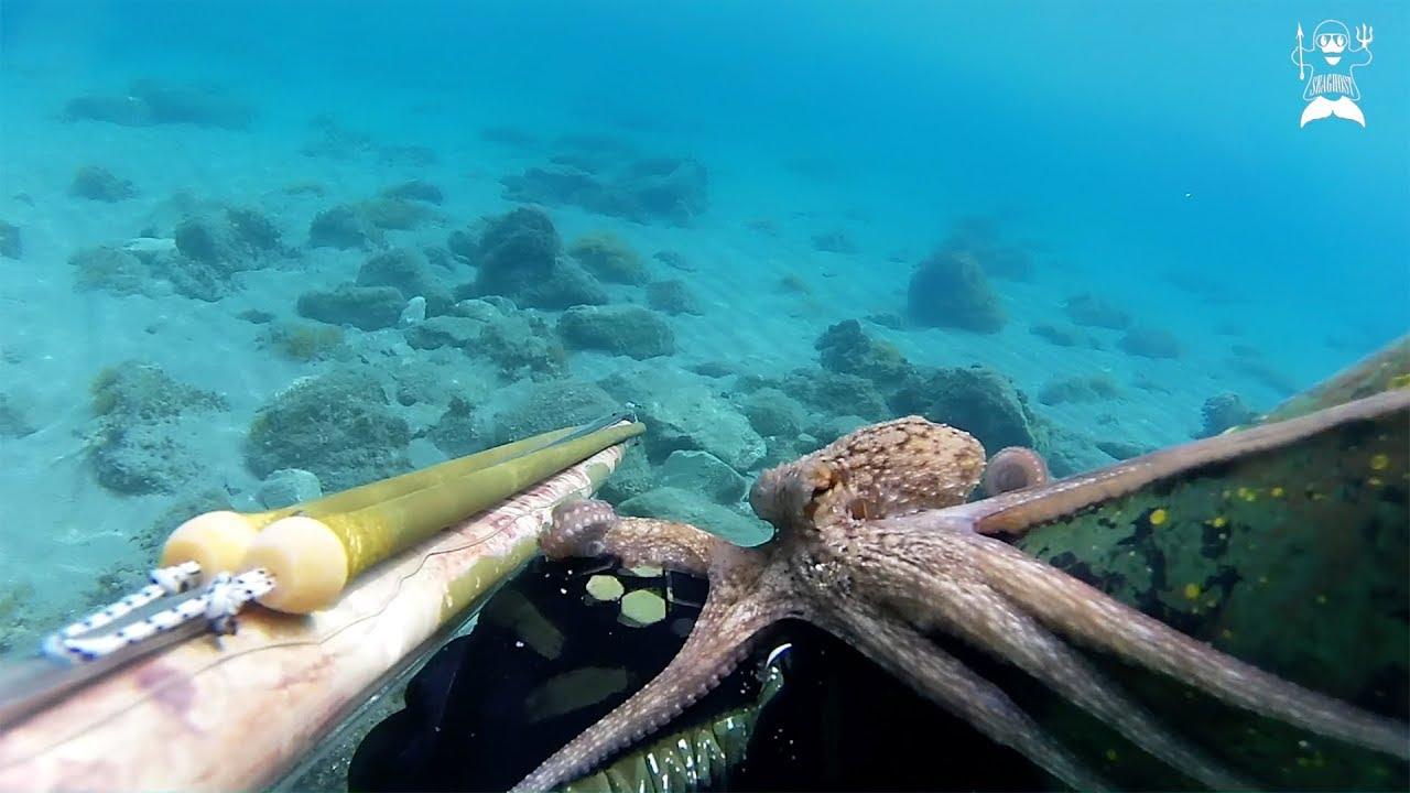 pesca apnea basso fondo