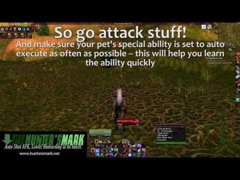 Vanilla WoW] Pet Training: Learning Special Abilities - YouTube
