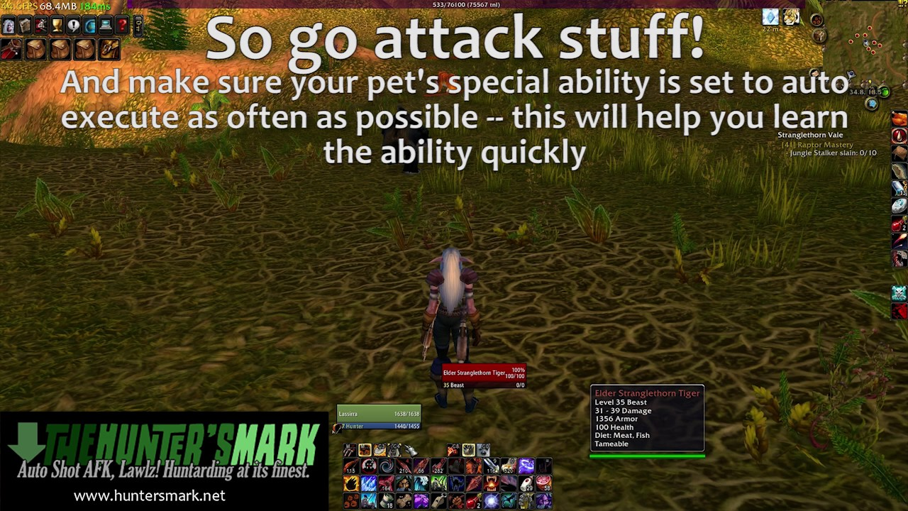 Vanilla Wow Pet Training Learning Special Abilities Youtube
