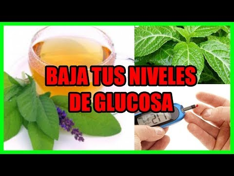 🍂🍂-baja-tus-niveles-de-glucosa-con-estos-4-remedios-caseros-🍂🍂