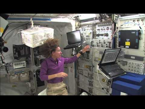Human Research Racks on the Space Station