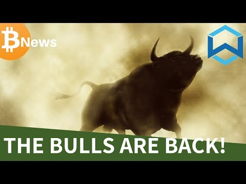 The Bitcoin BULLS are BACK! Wanchain Introduction - Today's Crypto News
