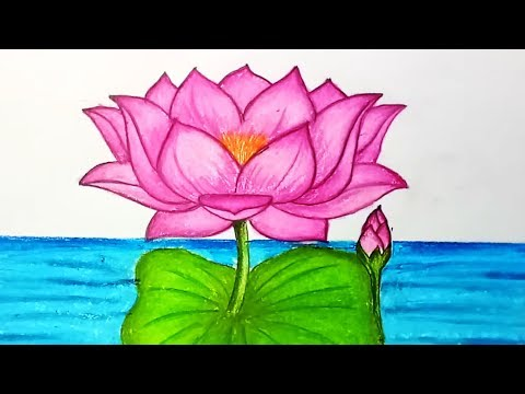 How to Draw Lotus Flower.Step by step easy draw for children, kids, beginners.