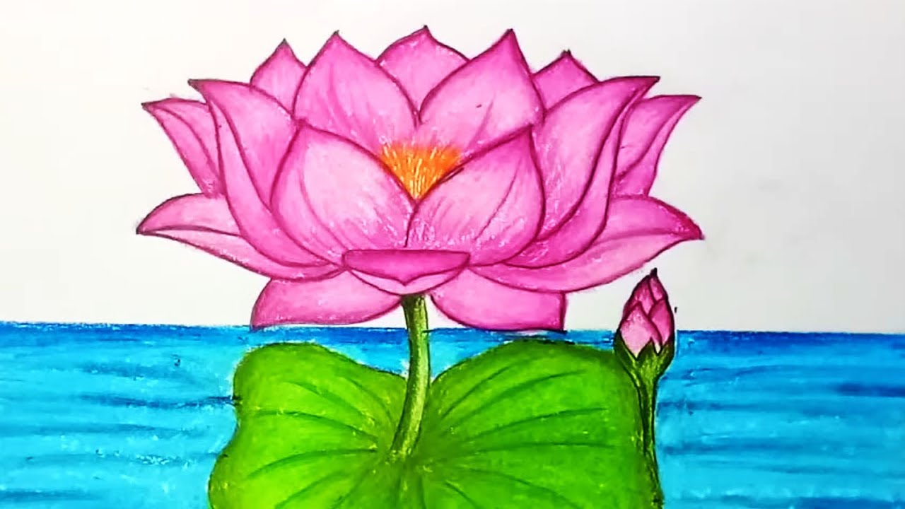 How To Draw Lotus Flowerep By Step Easy Draw For Children Kids