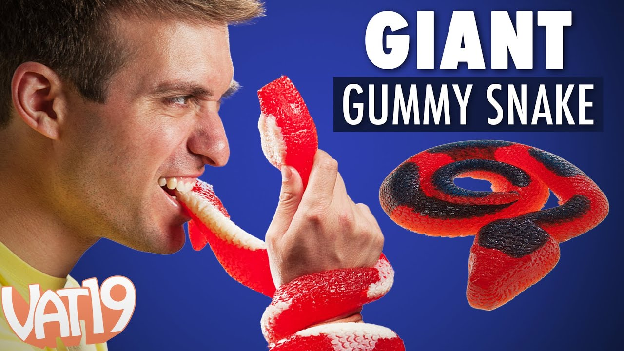 the two foot long gummy snake youtube