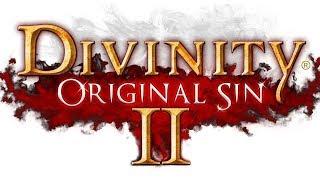Divinity - Original Sin 2 ЛАБИРИНТ ГАРГУЛИЙ И ИСТОРИК 10