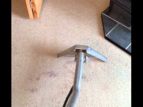 Carpenter's cleaning Services Removing Cocoa stains from carpet