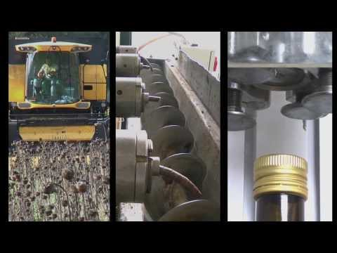 Torre Colombaia - Organic Sunflower Seed Oil - How it's Made