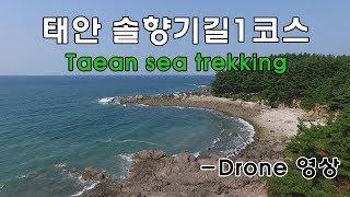 [Eng sub]태안 솔향기길 1코스 트레킹 및 태안 …