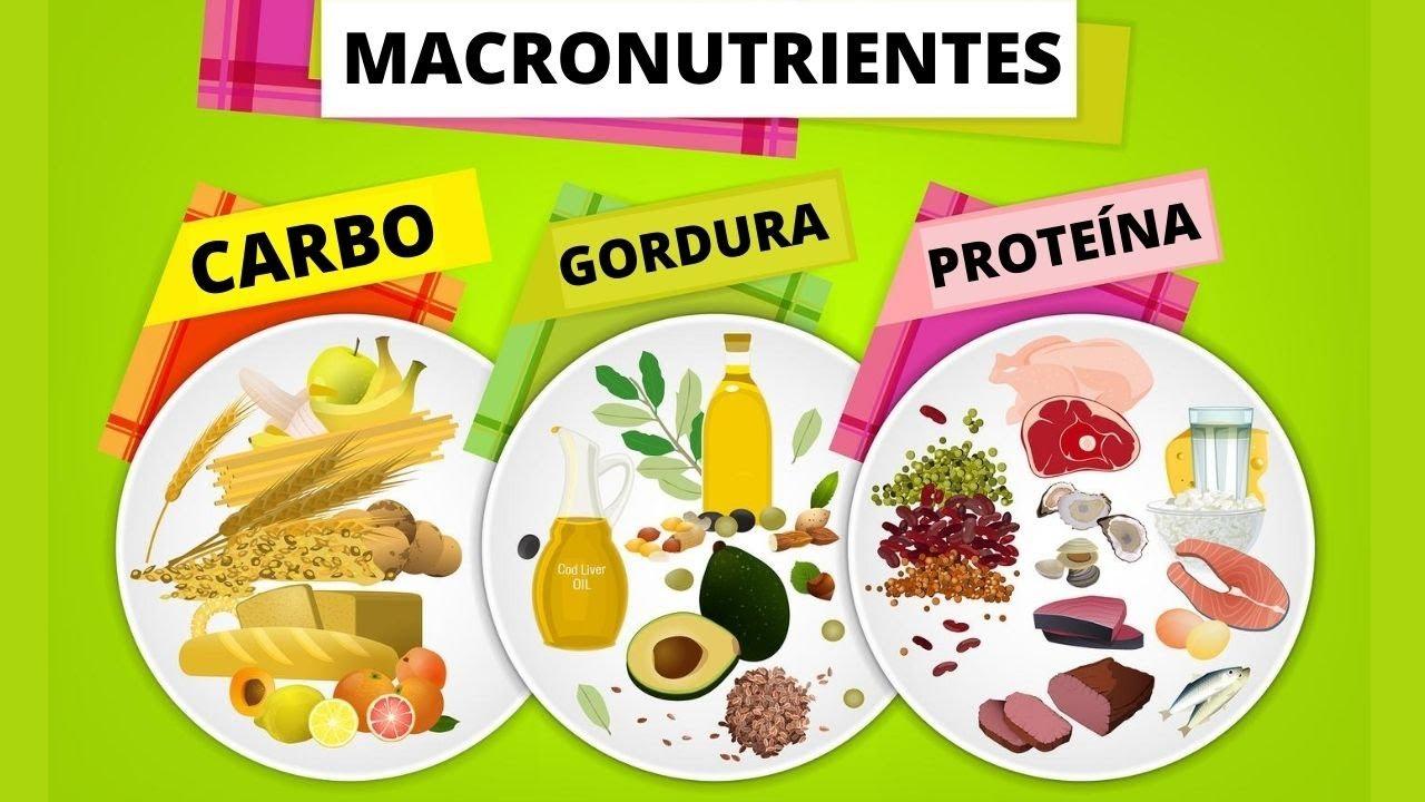 Como Calcular os Macronutrientes da Sua Dieta (em menos de 4 minutos)