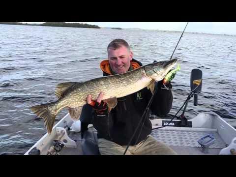 Irish Fishing Tours - Catchin' Fish