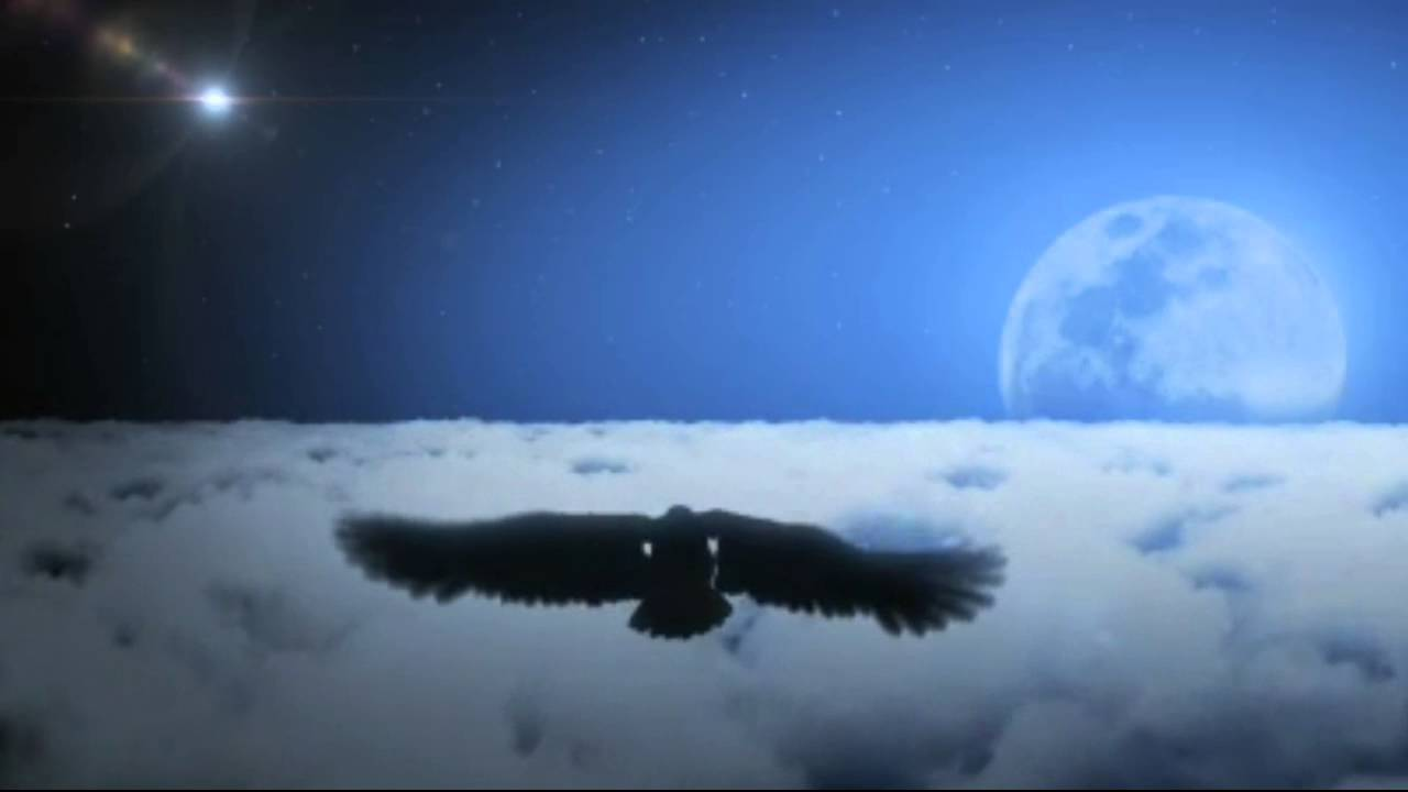 Bald Eagle Soaring High In Clouds At Night Background