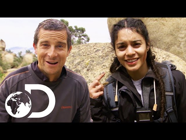 Vanessa Hudgens Kills and Eats A Rattlesnake!   Running Wild With Bear Grylls