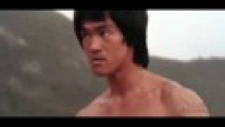 Bruce Lee Tribute Video